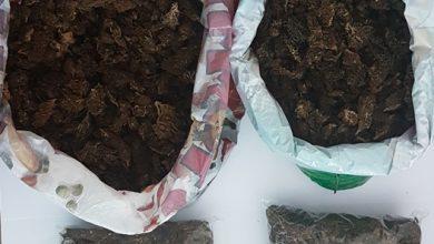 Photo of U vozilu pronađeno više od tri kilograma marihuane