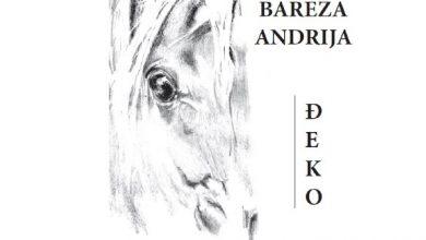 """Photo of Izložba Andrije Bareze """"Svijet konja"""""""