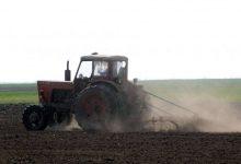 Photo of Sinj – Dodjela potpora za poljoprivredu – pogledajte tko je dobio i koliko