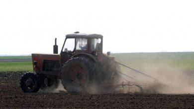 Photo of Javni poziv za dodjelu potpora u poljoprivredi na području Grada Sinja u 2021. g.