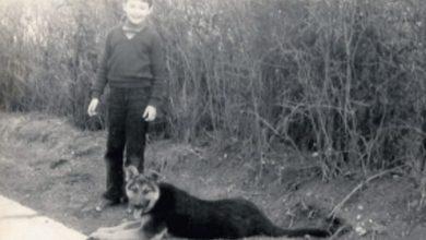 Photo of Optužen srpski dragovoljac – zlostavljao, mučio i ubio 16-godišnjaka Sinišu Rajkovića u Vukovaru